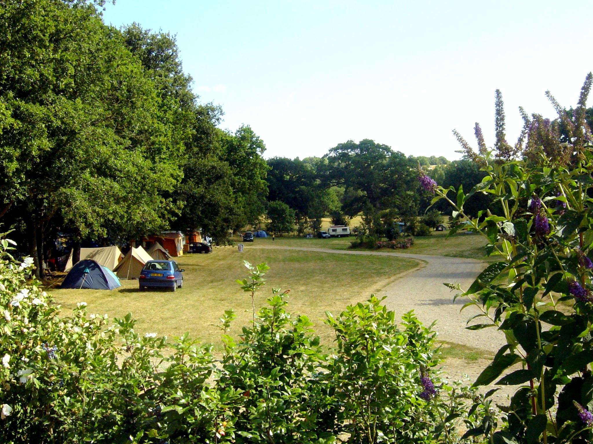 Camping LA BERGERIE