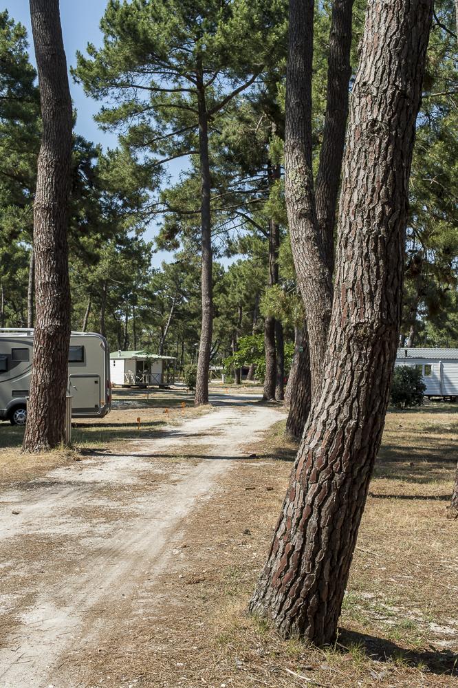 Camping municipal de l'Océan