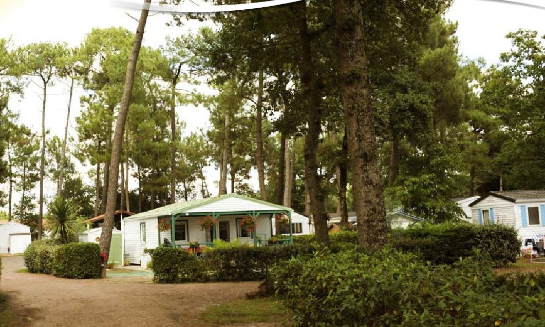Camping DOMAINE DE LA SAPINIERE