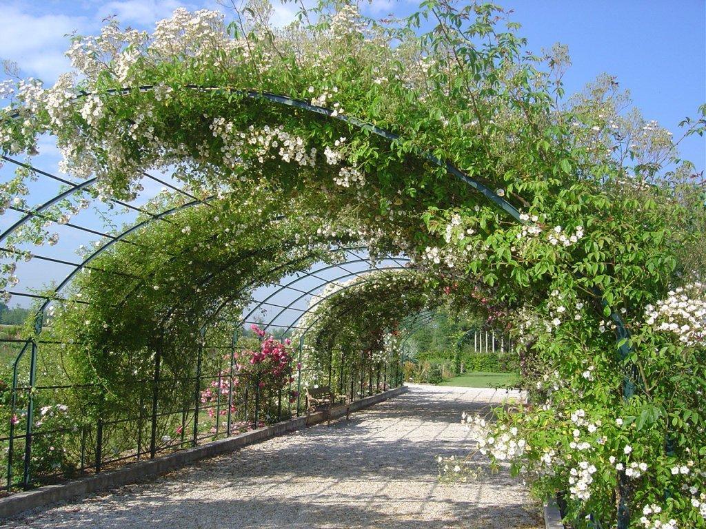 Jardin botanique de marnay sur seine marnay sur seine for Jardin en seine 2015