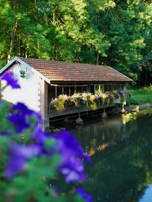 Nature, parcs et jardins